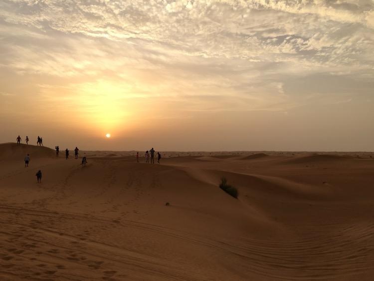 sunset dubai reserve conservation