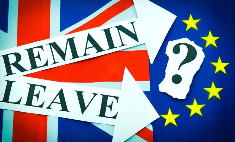 EU referendum vote brexit