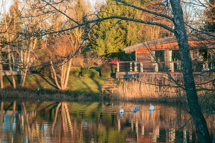 brompton lakes lodge review