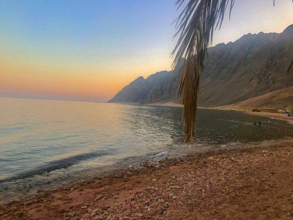 Wadi Gnai by Nesreen El-Molla