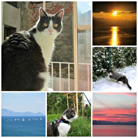 My Story_WhyRoamTravel.com