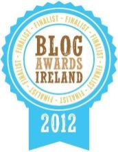 Blog Ireland Awards Finalist for Best Blog of an SME