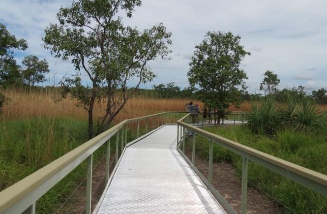 Lichfield Termite Board walk