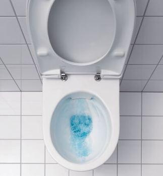 Cuvette WC suspendue sans bride (Rimfree ®) Prima de Allia