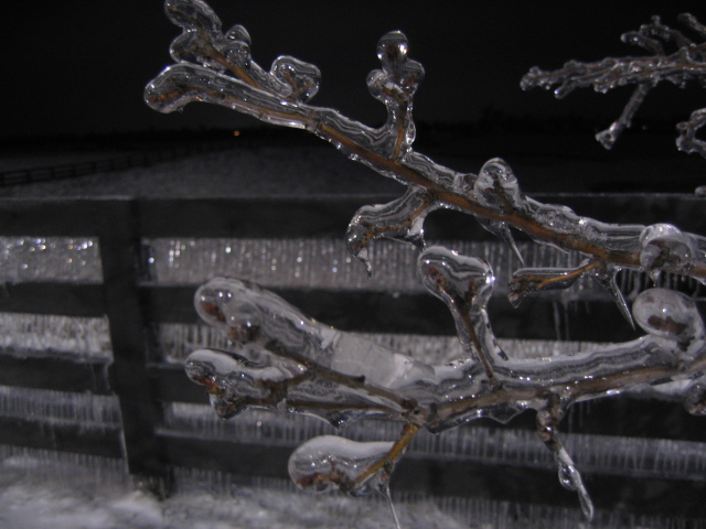 Ice Storm in Kentucky 2009