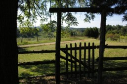 kentucky-cabin-view-from-the-front-porch-across-the-driveway1