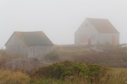 Two Houses in the Fog