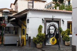 Funchal's painted doors.