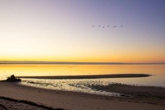 Sunrise over Provincetown harbor