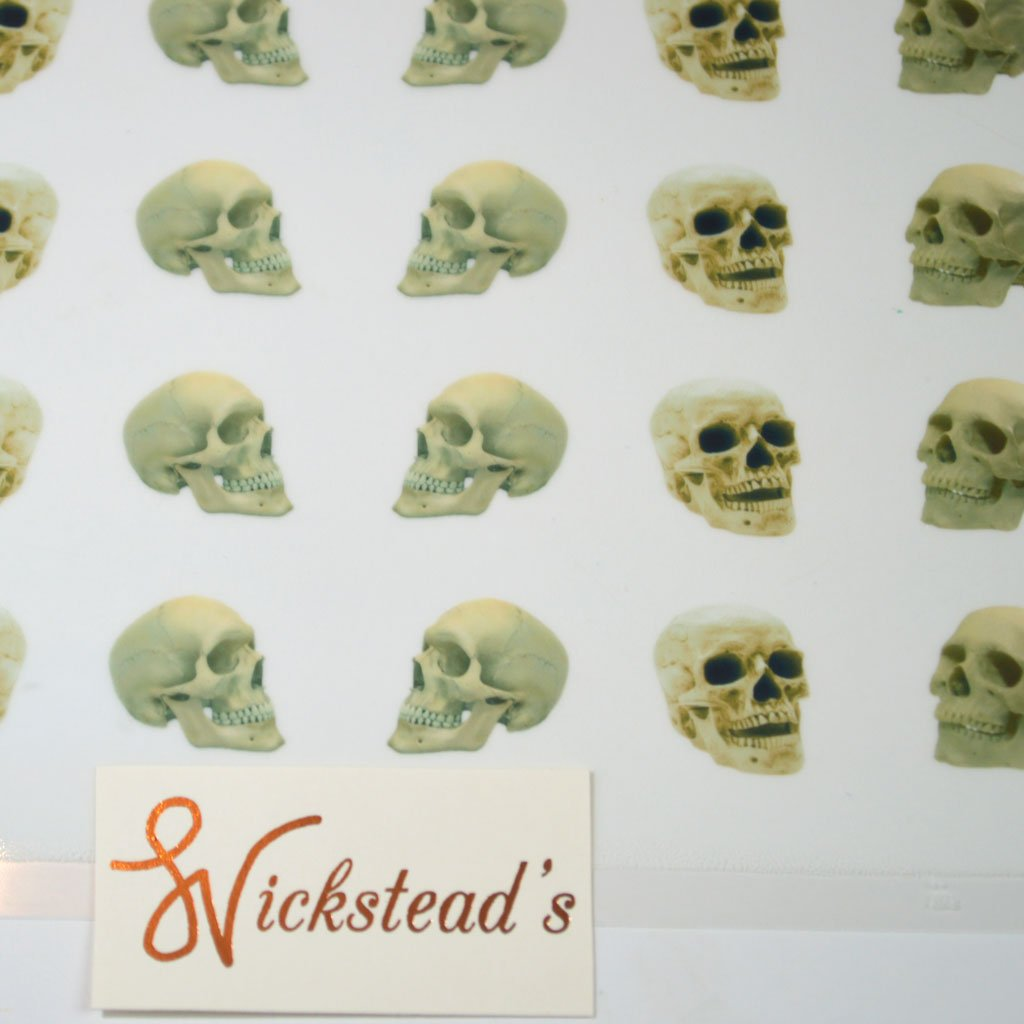 Wickstead's-Eat-Me-Edible-Meringue-Transfer-Sheets–Bone-Skulls-(5)