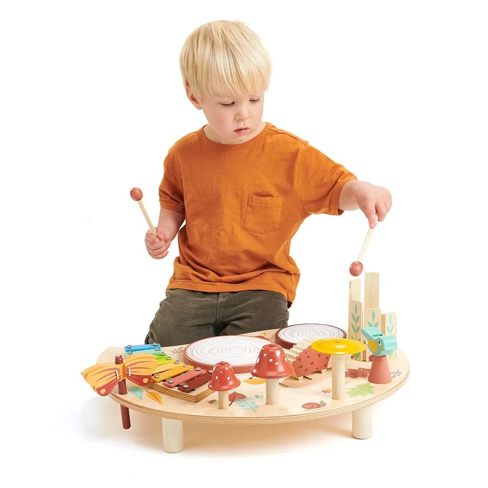 TL8655 music set with boy playing