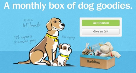 Bark Box Website
