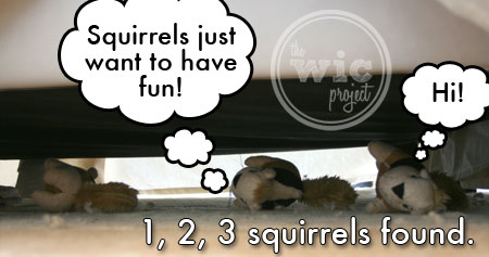 Squirrels 3, 4, 5