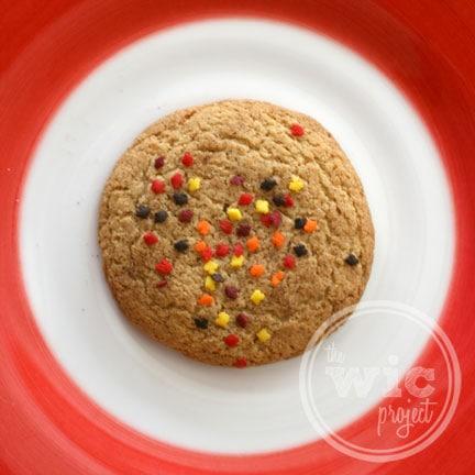 Homemade Whole Wheat Sugar Cookie
