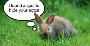 How to Have an Easter Egg Hunt (from Hiding Eggs to Eating Chocolate)