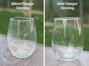 Cleaning with Vinegar - Before & After