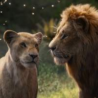 Disney's The Lion King Review: A Fresh Take with Mesmerizing Visual Effects