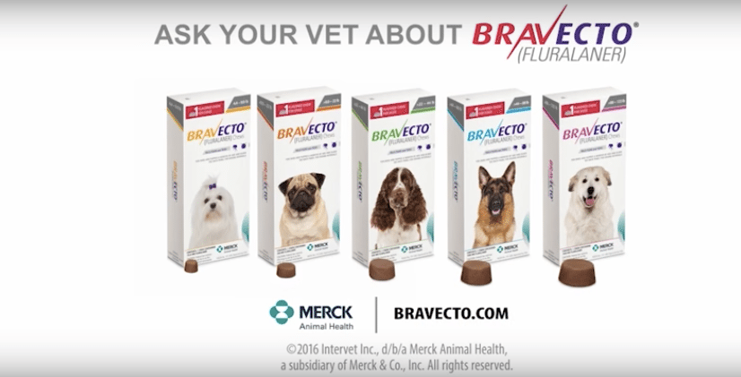 Bravecto Flea Medicine Dog Deaths