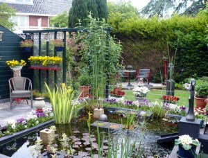 Tante Tineke and Oom Roel's gorgeous tuin (backyard) in Driehuis