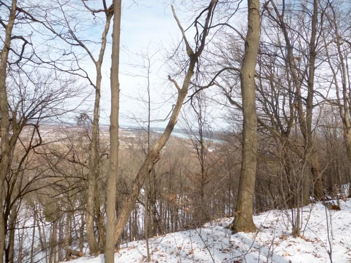 View from the Niagara Escarpment.