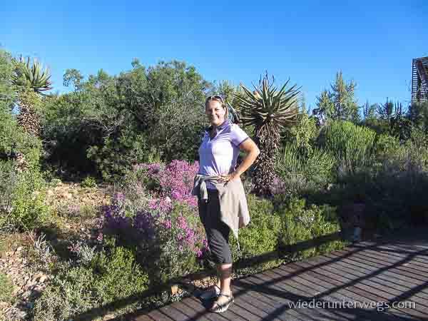 glamping südafrika (10 von 21)