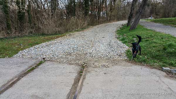 weinberg walking gaweinstal 03042015 (12 von 15)