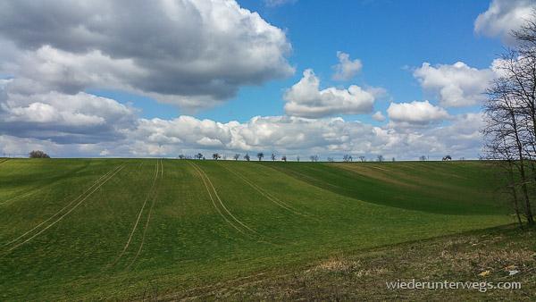 weinberg walking gaweinstal 03042015 (2 von 15)