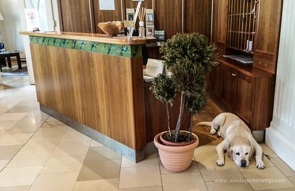 Hotel Herzoghof Baden (22 von 22)