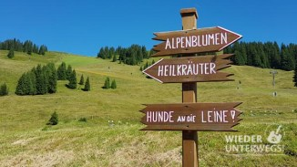 Alpine Palace_web-61