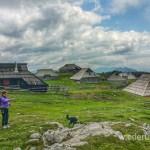 Ausflugstipp von Laibach: In die Berge bei Kamnik-Velika Planina