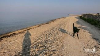 Strandweg nach Novalja