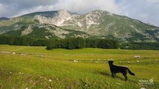 Montenegro Tipps Nationalparks_WEB (226 von 342)