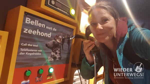 Texel web_optimiert_2017-380