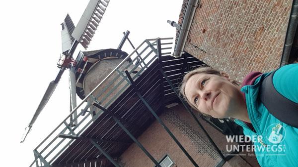 Texel web_optimiert_2017-440