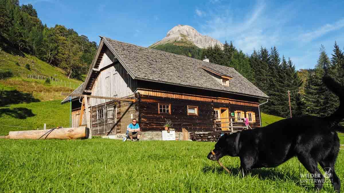 Urlaub am Bauernhof: Freiheit für Coffee und viel Ruhe für uns.
