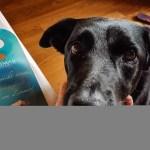 """Im neuen """"Mein Hund und ich"""": Coffee und Wellness"""