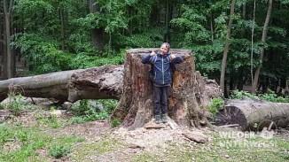 naturpark sparbach 2017_web-28