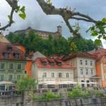 Es grünt so grün in Ljubljana. Mit und ohne Hund.