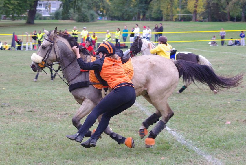 Mounted Games Schweiz 2011