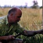 Peter Wagner ist Mitglied im Imkerverein Diepholz und Umgebung e.V. Mit viel Gefühl und Sachverstand betreut er seine Honigbienen.