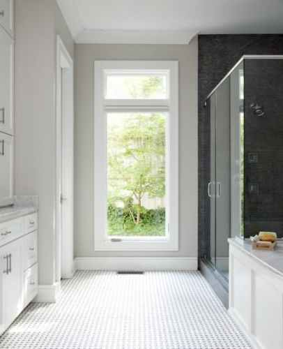 Sherwin Williams Mink Bathroom: Paint Colors: Repose Gray By Sherwin Williams