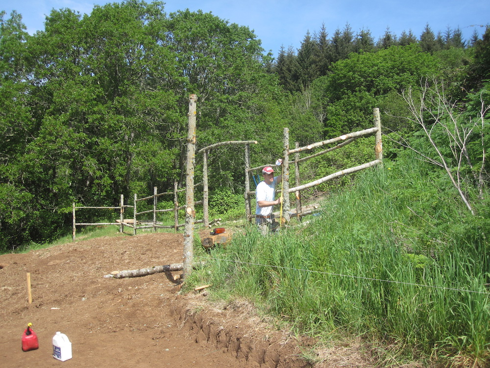 Building a log rail fence with our own wood