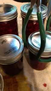 Canning Lemon Strawberry Jam, all about the process!