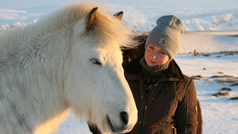 countryside horse riding tour in Iceland