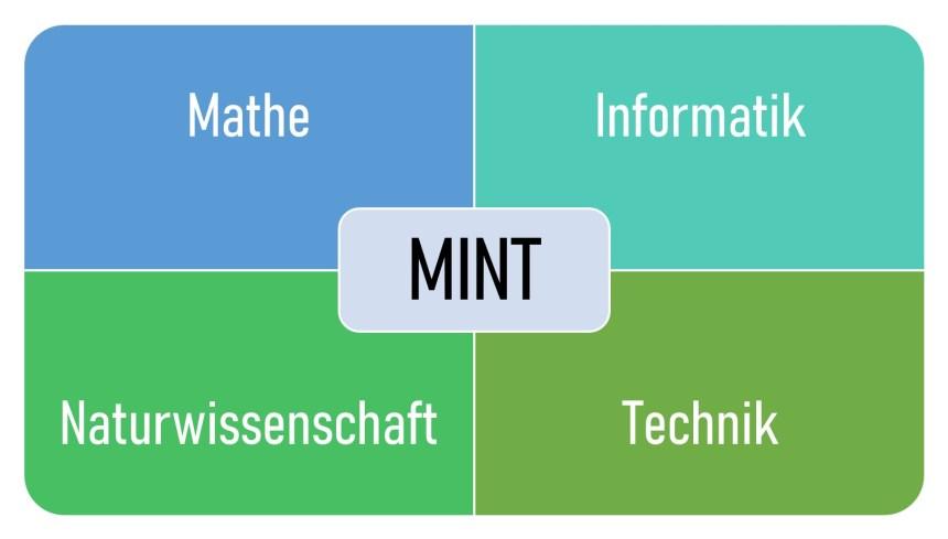 MINT-Fächer im Wirtschaftsingenieurwesen