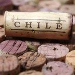 20-09-2014 : Chili