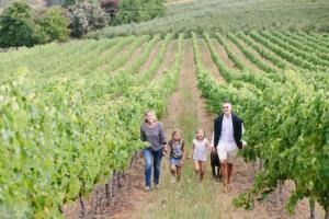 almenkerk-wine-estate