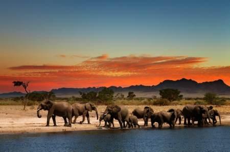Reis Zuid-Afrika