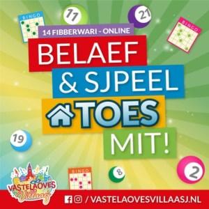 Vastelaoves Villaasj Bingo op zondag 14 februari