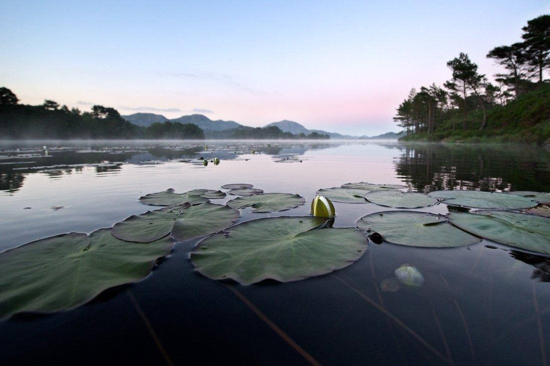 Storavatnet Meland
